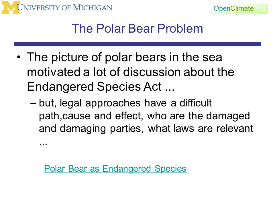The Polar Bear Problem The picture of polar bears in the sea motivated a lot of discussion about the Endangered Species Act...