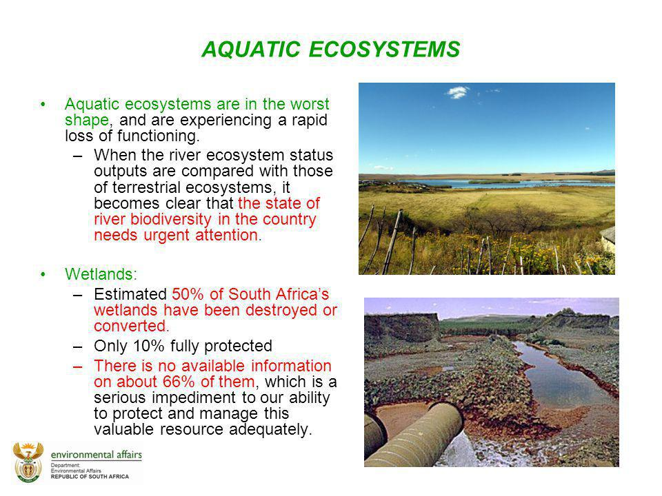 AQUATIC ECOSYSTEMS Aquatic ecosystems are in the worst shape, and are experiencing a rapid loss of functioning. –When the river ecosystem status outpu