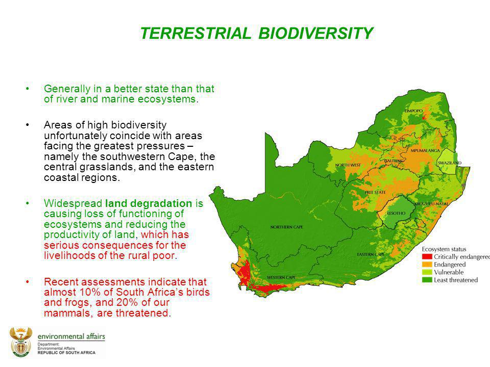 TERRESTRIAL BIODIVERSITY Generally in a better state than that of river and marine ecosystems. Areas of high biodiversity unfortunately coincide with