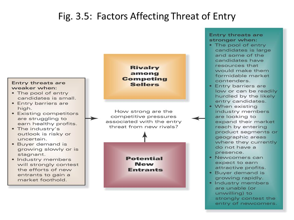 Fig. 3.5: Factors Affecting Threat of Entry