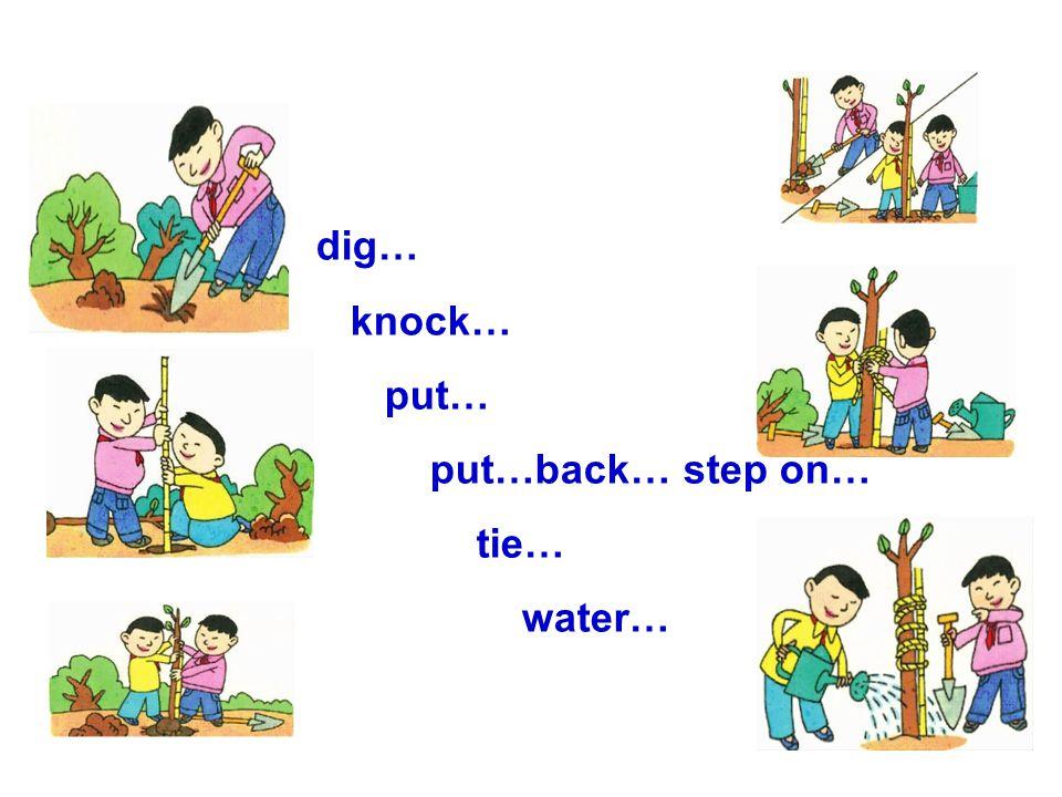 dig… knock… put… put…back… step on… tie… water…