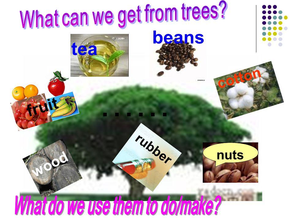 fruit wood nuts cotton tea beans …… rubber
