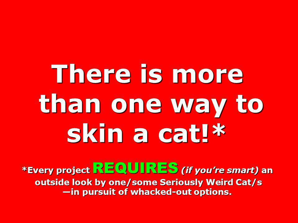 There is more than one way to skin a cat!* than one way to skin a cat!* *Every project REQUIRES (if youre smart) an outside look by one/some Seriously