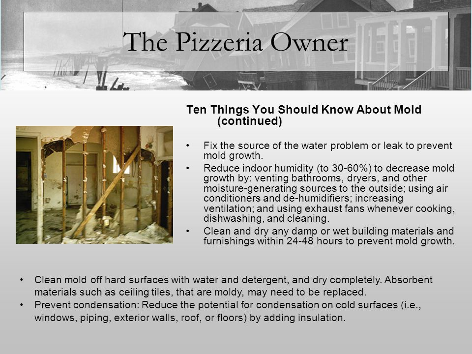 The Pizzeria Owner Ten Things You Should Know About Mold (continued) In areas where there is a perpetual moisture problem, do not install carpeting (i.e., by drinking fountains, by classroom sinks, or on concrete floors with leaks or frequent condensation).