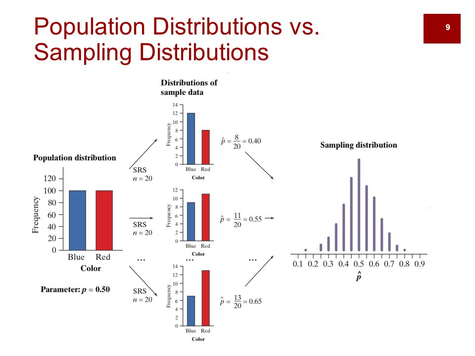 10 The Sampling Distribution of When we choose many SRSs from a population, the sampling distribution of the sample mean is centered at the population mean µ and is less spread out than the population distribution.