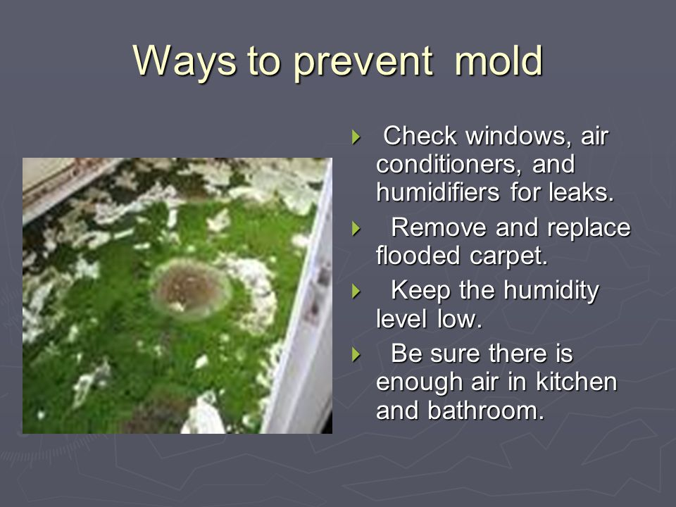 How does mold affect your body Contd Toxic mold releases poisons that can cause internal bleeding in lungs and nerve damage.