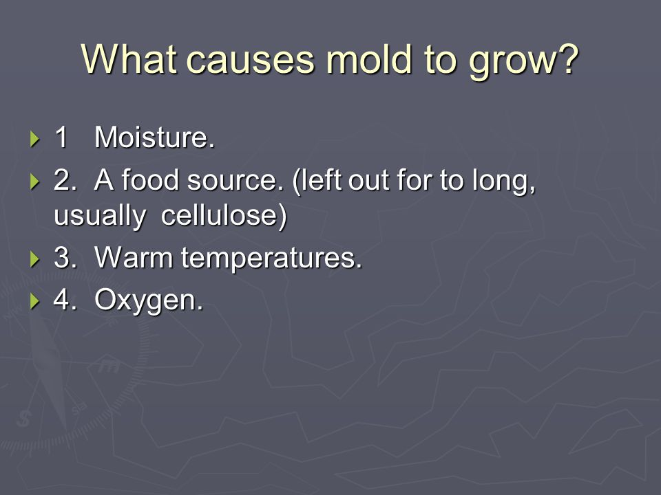 Effects of Mold It can cause rashes, skin problems, and nerve damage. Air becomes foul smelling/toxic. Kills and destroys the human body.