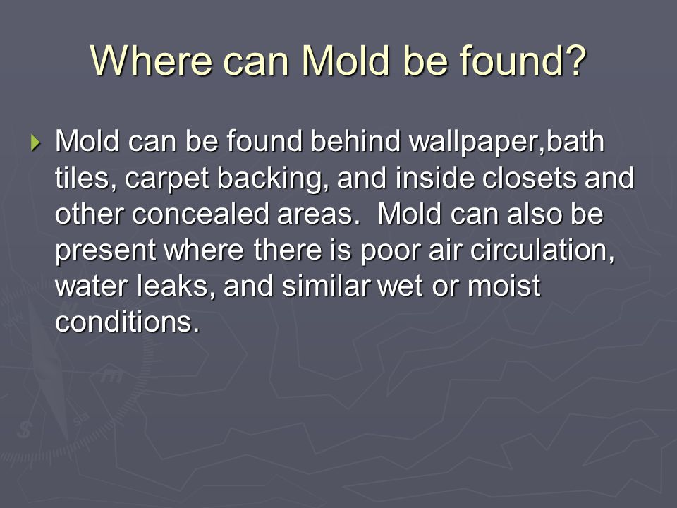 What causes mold to grow. 1 Moisture. 1 Moisture.