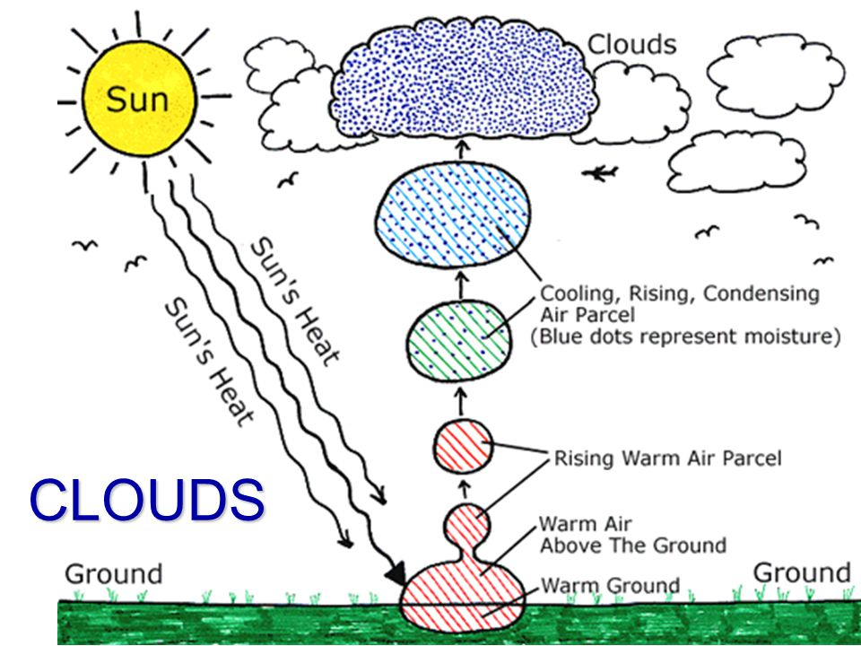 CLOUDS – How do they form? Air rises Air rises Cools to its dew point through expansion (Less pressure, molecules spread out, heat is given off) Cools