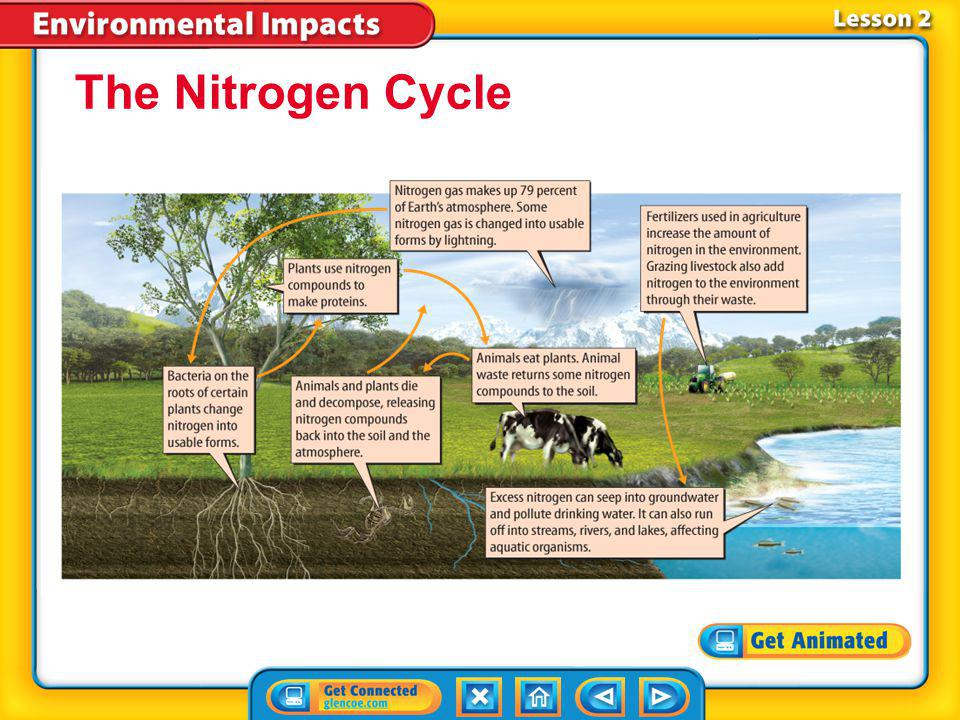 Lesson 2-1 Scientists estimate that human activities have doubled the amount of nitrogen cycling through the ecosystems. Excess nitrogen can kill plan