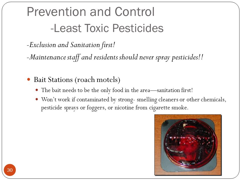 Prevention and Control -Least Toxic Pesticides -Exclusion and Sanitation first.