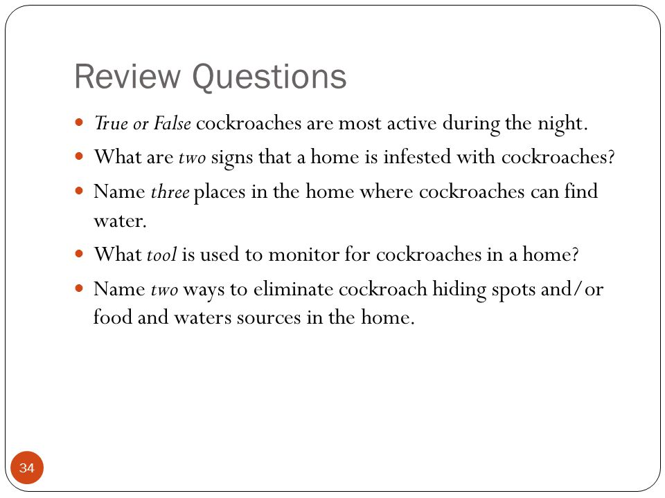 Review Questions True or False cockroaches are most active during the night.