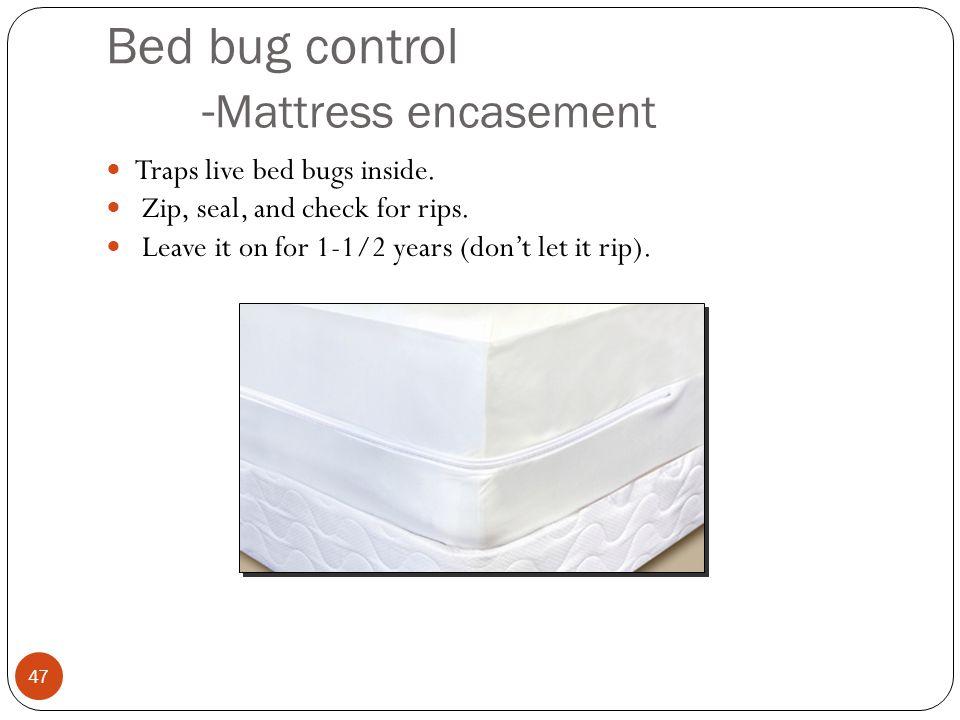 Bed bug control - Mattress encasement Traps live bed bugs inside.