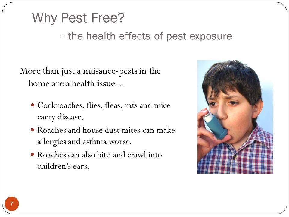 Why Pest Free.