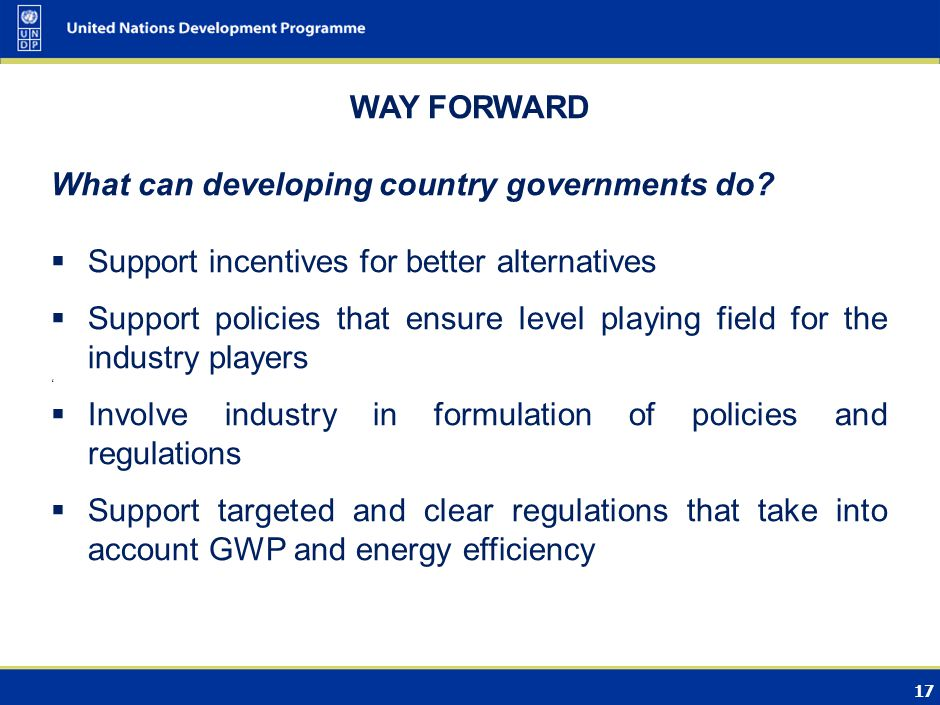 17 WAY FORWARD What can developing country governments do.