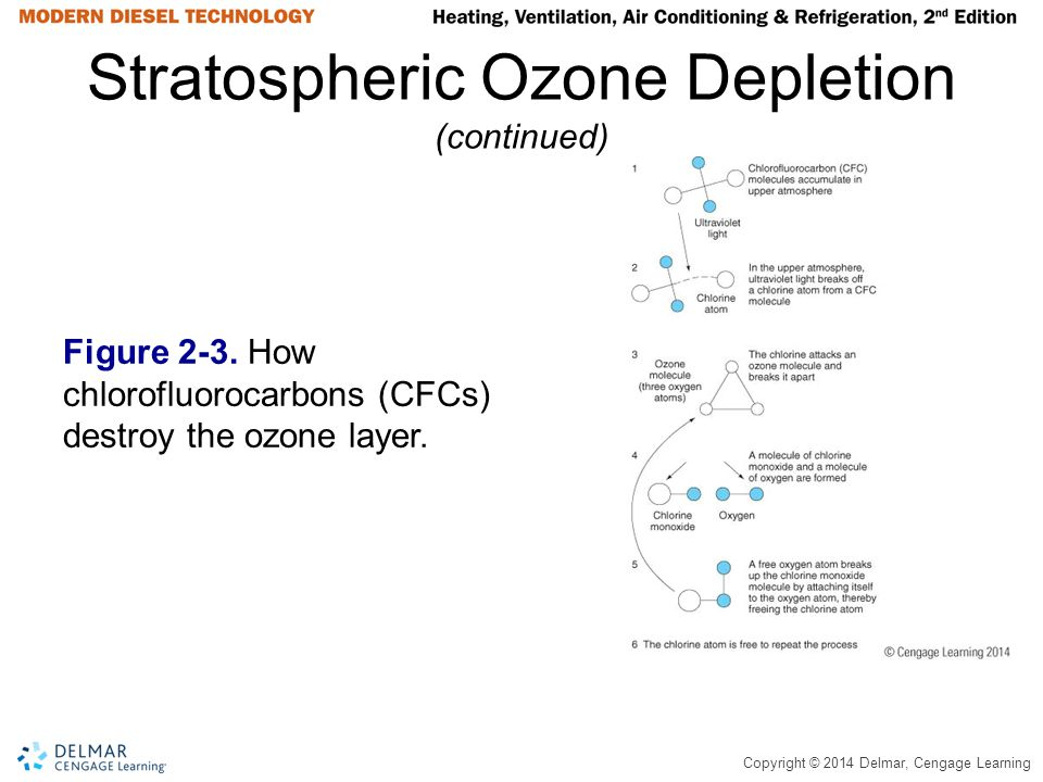 Copyright © 2014 Delmar, Cengage Learning Stratospheric Ozone Depletion (continued) Figure 2-3. How chlorofluorocarbons (CFCs) destroy the ozone layer