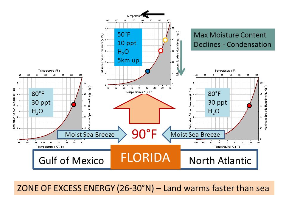 FLORIDA Gulf of MexicoNorth Atlantic ZONE OF EXCESS ENERGY (26-30°N) – Land warms faster than sea 90°F Moist Sea Breeze Max Moisture Content Declines