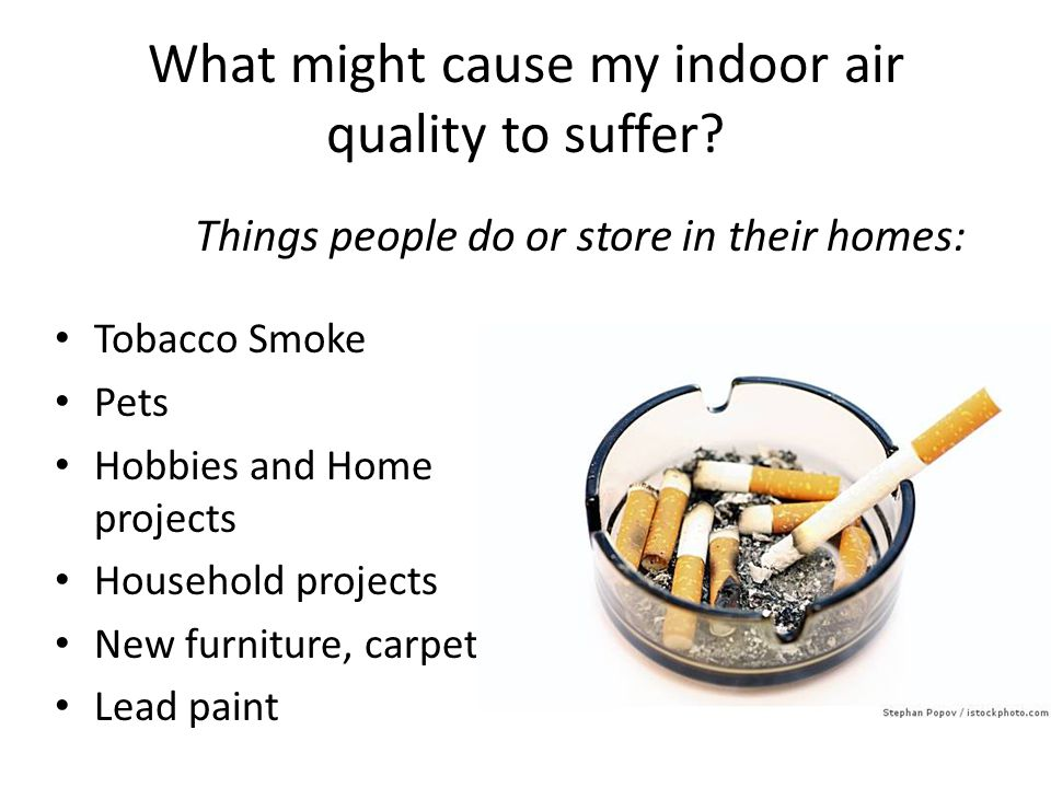 What might cause my indoor air quality to suffer? Tobacco Smoke Pets Hobbies and Home projects Household projects New furniture, carpet Lead paint Thi