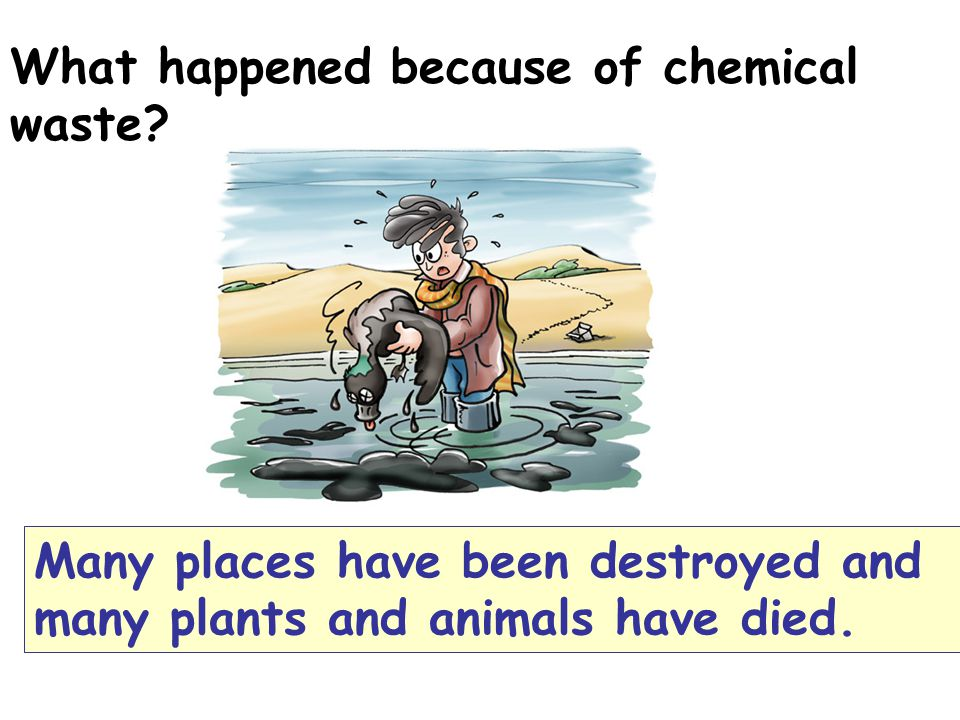 What happened because of chemical waste.