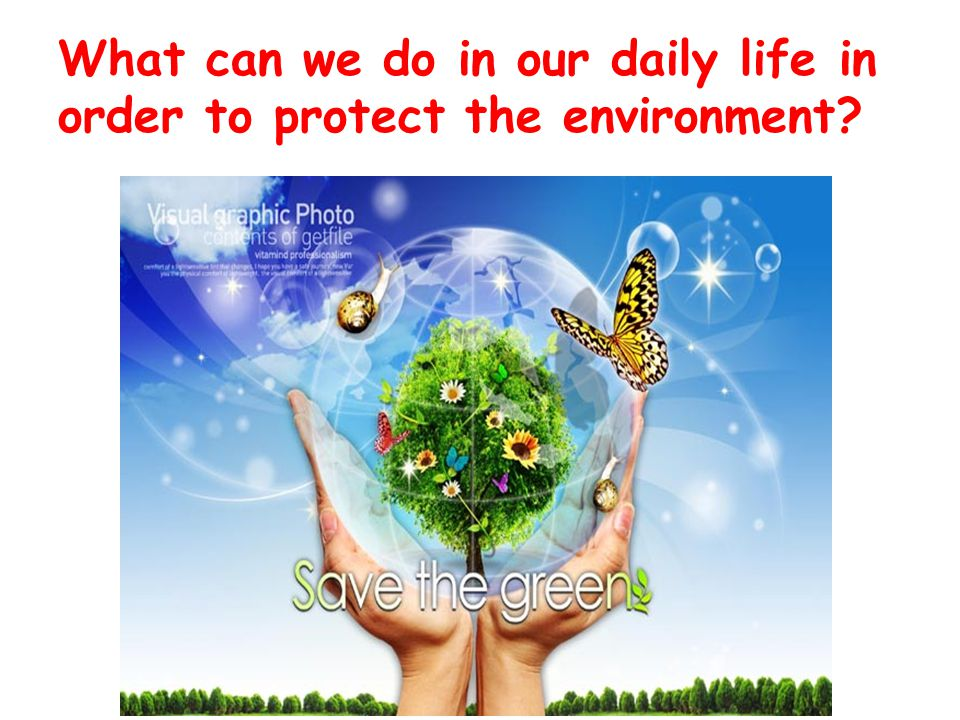 What can we do in our daily life in order to protect the environment?