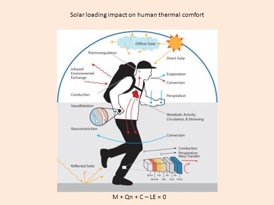 Solar loading impact on human thermal comfort M + Qn + C – LE = 0