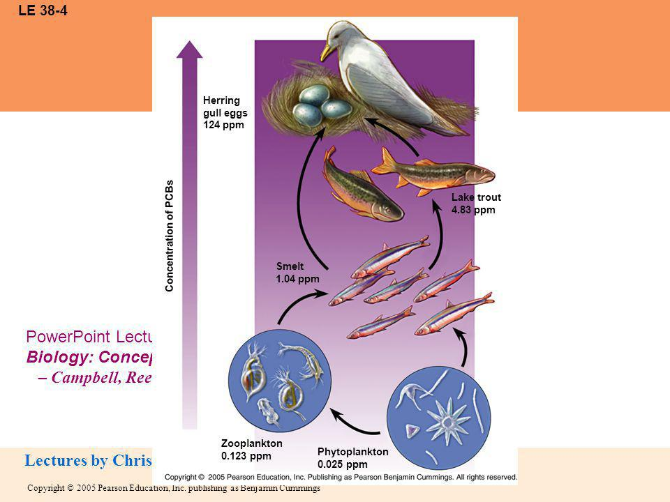 Copyright © 2005 Pearson Education, Inc. publishing as Benjamin Cummings PowerPoint Lectures for Biology: Concepts and Connections, Fifth Edition – Ca