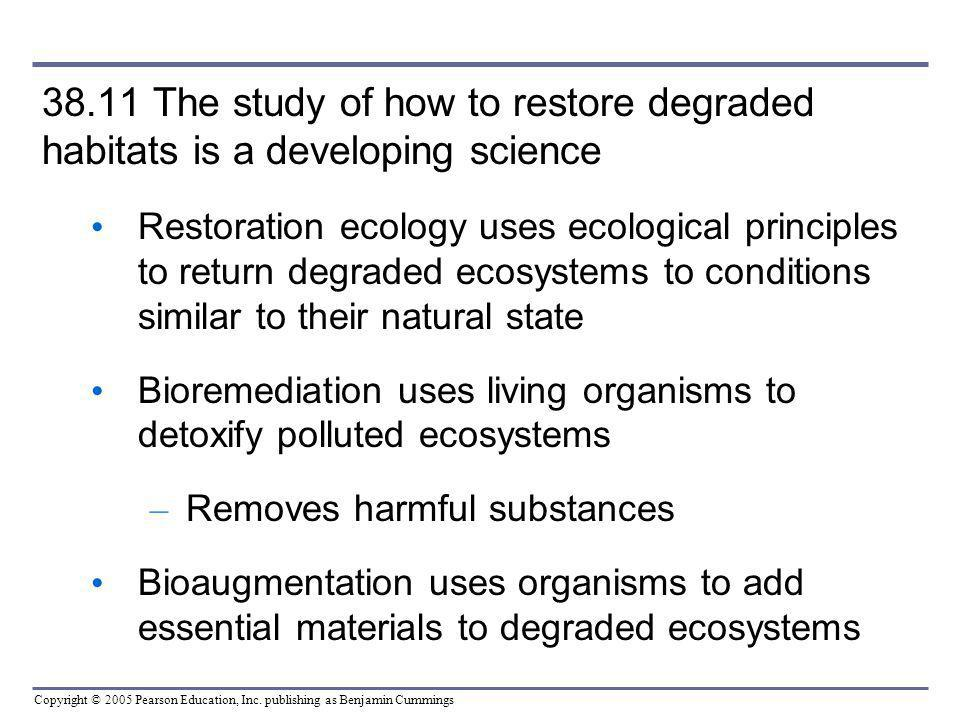 Copyright © 2005 Pearson Education, Inc. publishing as Benjamin Cummings 38.11 The study of how to restore degraded habitats is a developing science R
