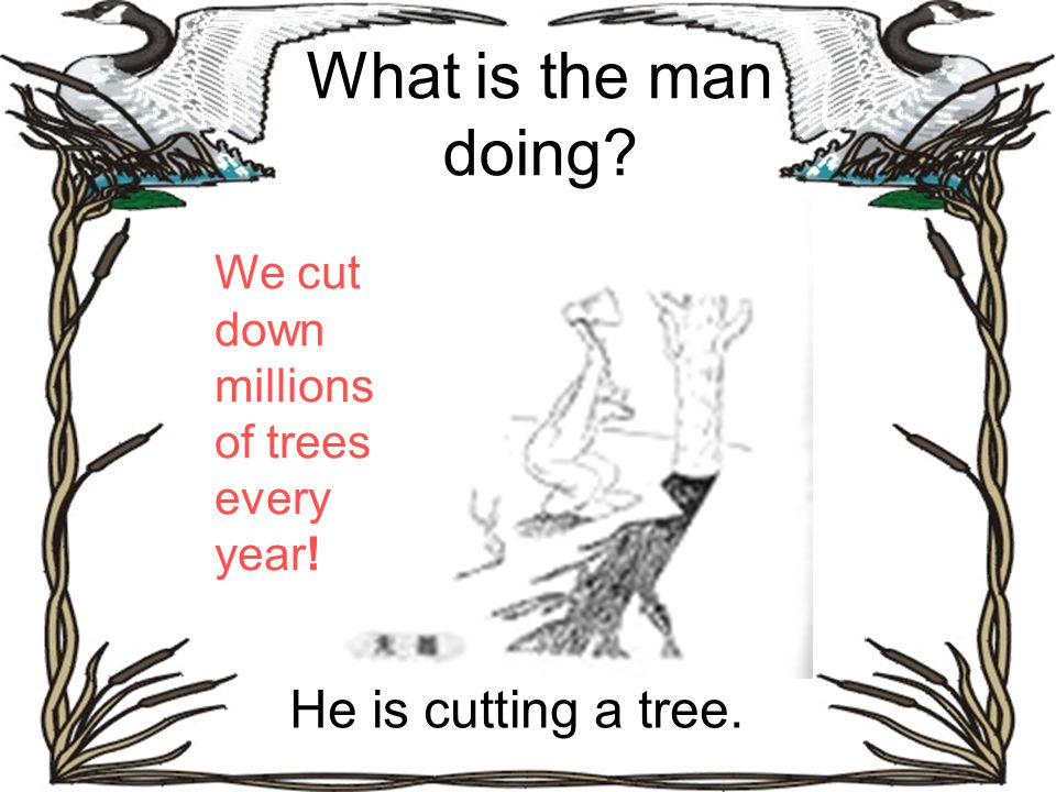 What is the man doing? He is cutting a tree. We cut down millions of trees every year!