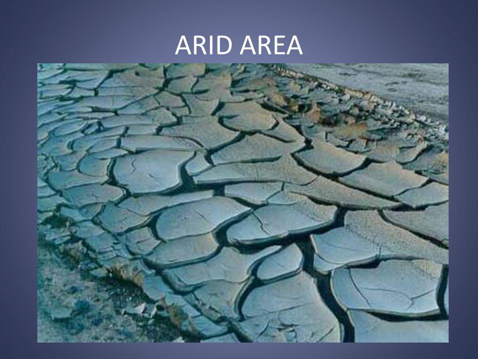 ARID AREA