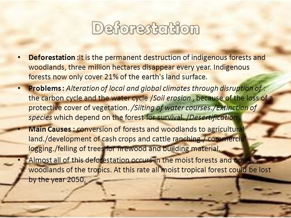 Deforestation :It is the permanent destruction of indigenous forests and woodlands, three million hectares disappear every year. Indigenous forests no