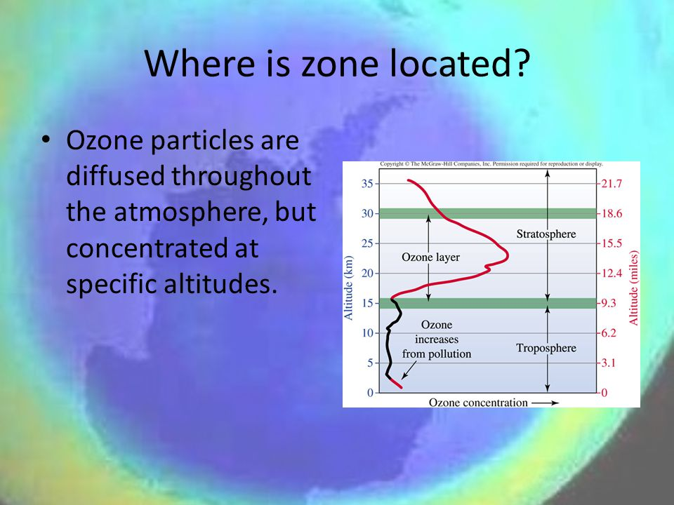 Where is zone located.