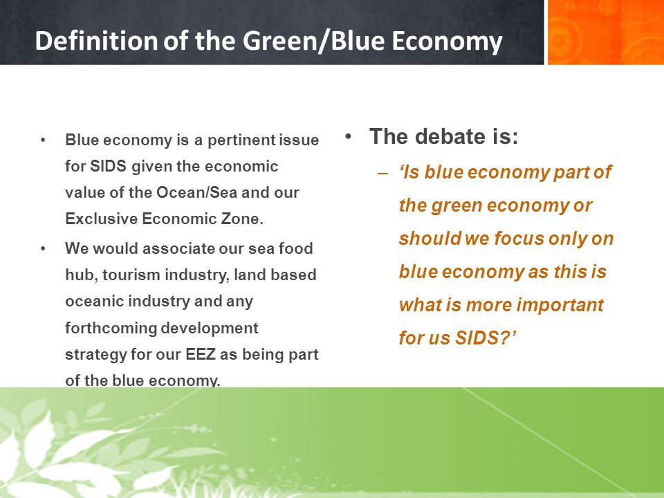 Definition of the Green/Blue Economy Blue economy is a pertinent issue for SIDS given the economic value of the Ocean/Sea and our Exclusive Economic Z