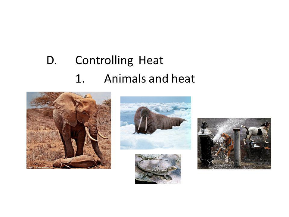 D.Controlling Heat 1.Animals and heat