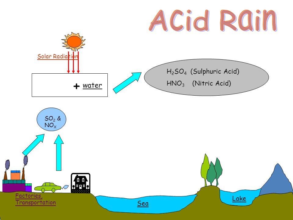 Acid Rain SO 2 & NO X + water SEA Sea Lake Factories, Transportation Solar Radiation H 2 SO 4 (Sulphuric Acid) HNO 3 (Nitric Acid)