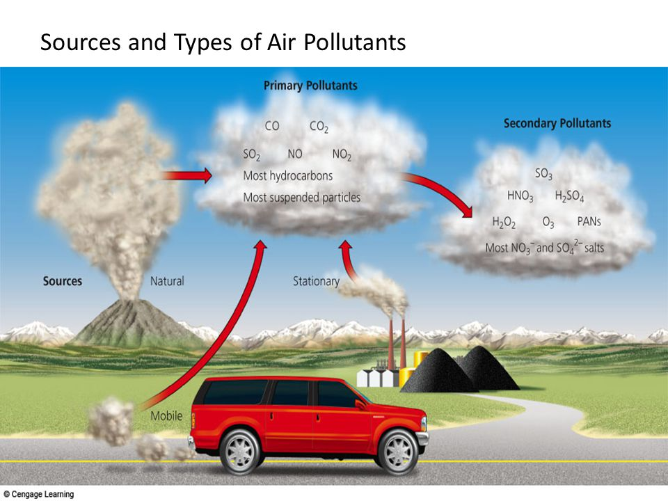 H2O Water NO 2 Nitrogen dioxide Hydrocarbons O 2 Molecular Oxygen HNO 3 Nitric Acid PANs Peroxyacyl nitrates Aldyhydes (e.g.