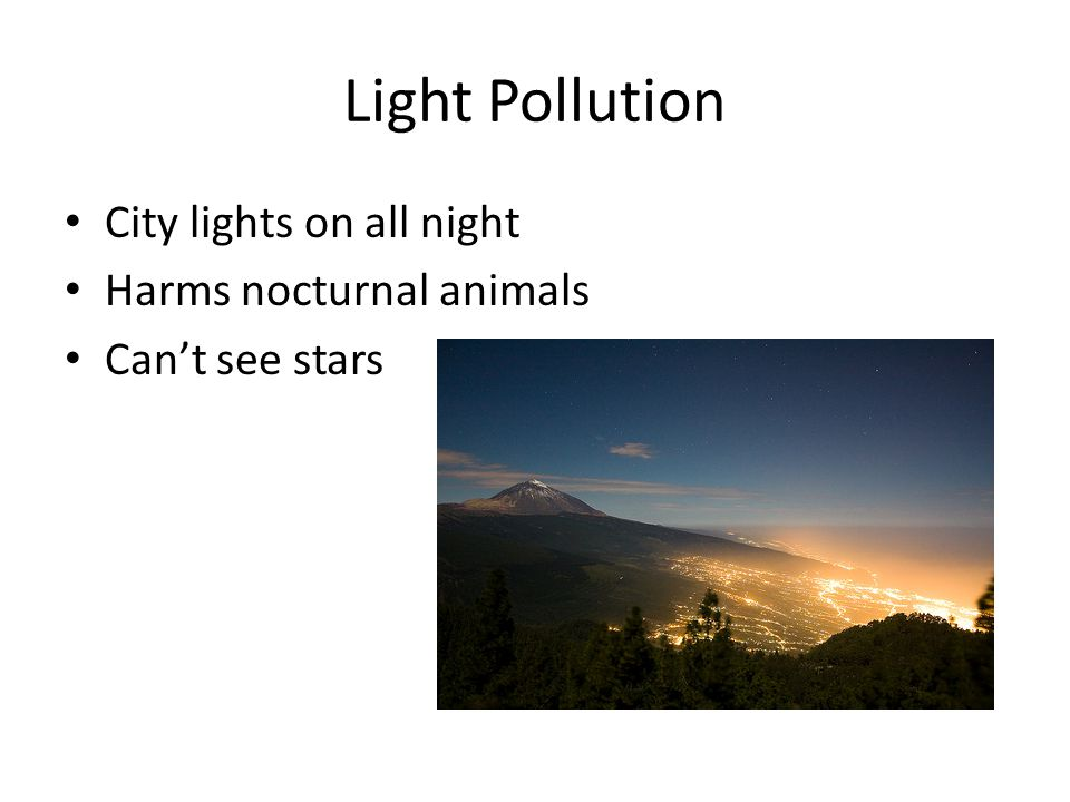 Light Pollution City lights on all night Harms nocturnal animals Cant see stars