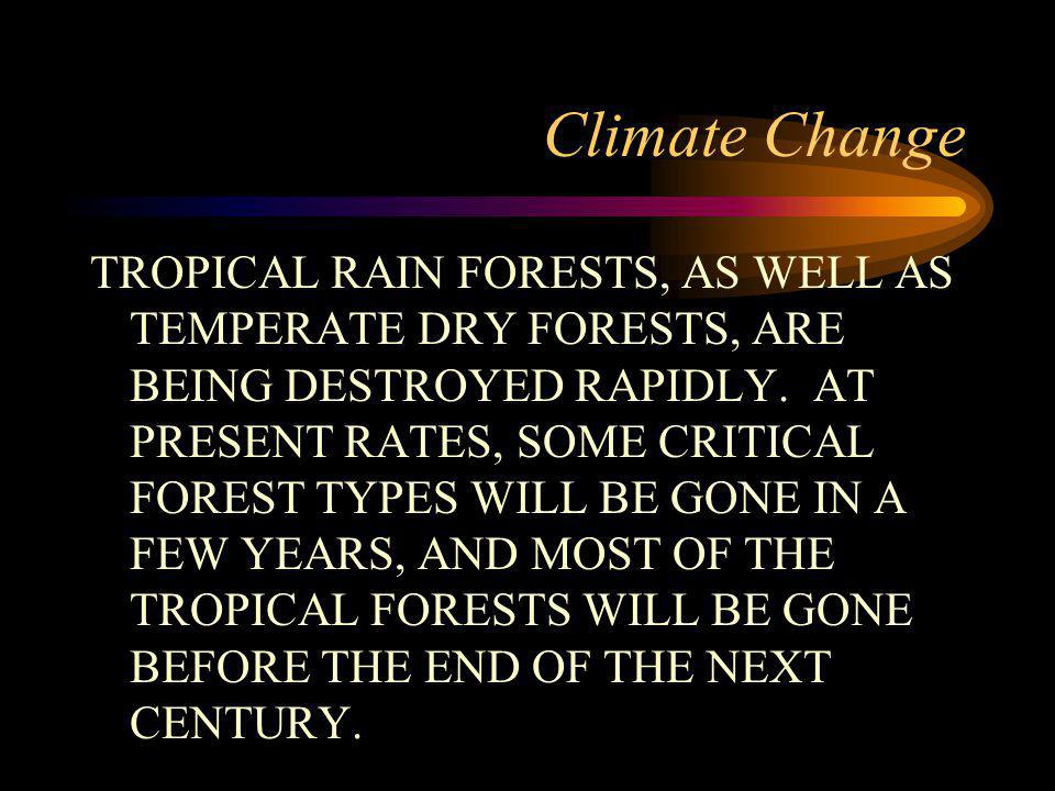 Climate Change TROPICAL RAIN FORESTS, AS WELL AS TEMPERATE DRY FORESTS, ARE BEING DESTROYED RAPIDLY.