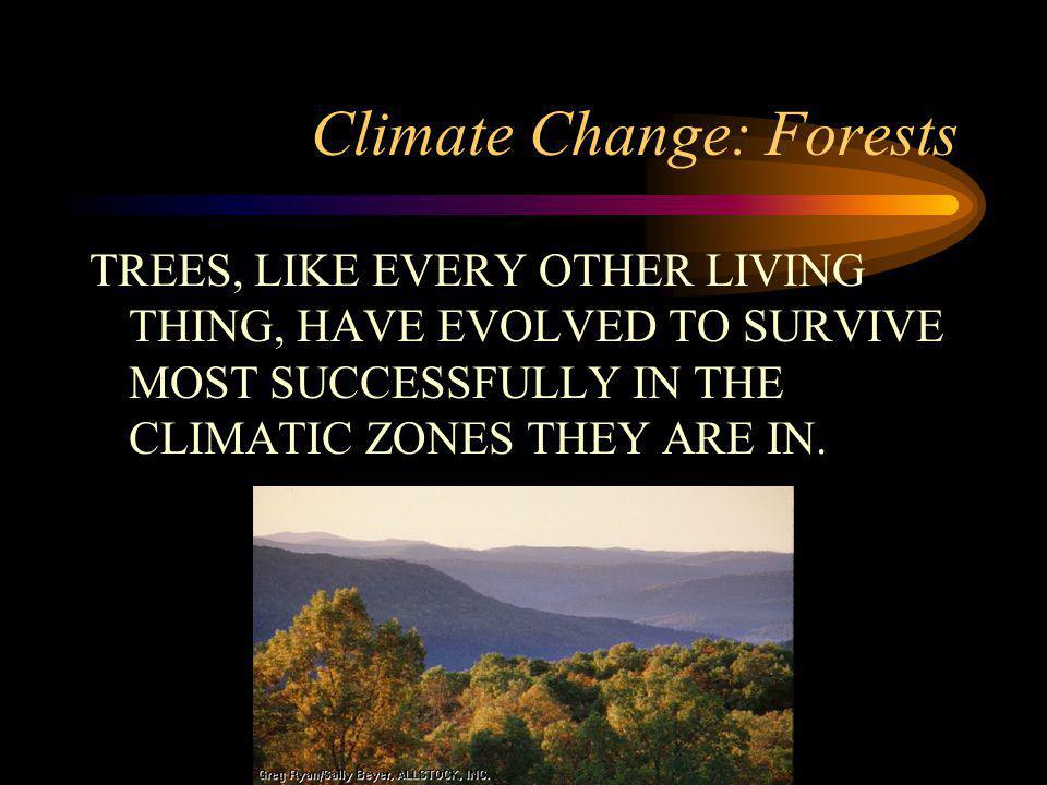 Climate Change: Forests TREES, LIKE EVERY OTHER LIVING THING, HAVE EVOLVED TO SURVIVE MOST SUCCESSFULLY IN THE CLIMATIC ZONES THEY ARE IN.