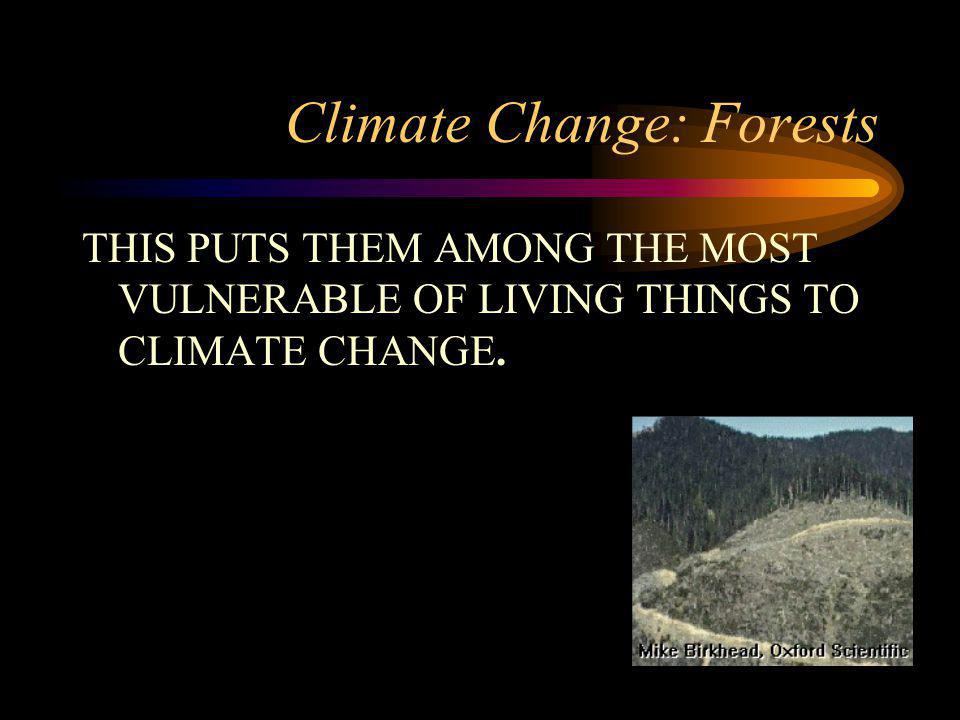 Climate Change: Forests THIS PUTS THEM AMONG THE MOST VULNERABLE OF LIVING THINGS TO CLIMATE CHANGE.
