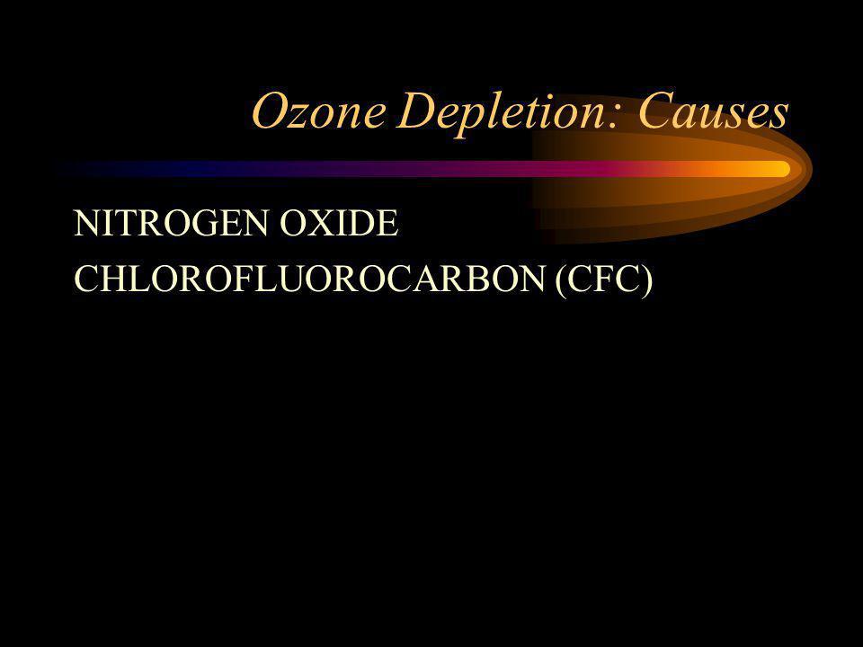 Ozone Depletion: Causes NITROGEN OXIDE CHLOROFLUOROCARBON (CFC)
