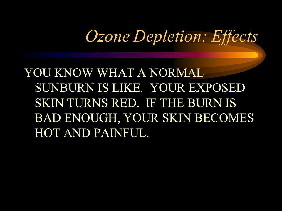 Ozone Depletion: Effects YOU KNOW WHAT A NORMAL SUNBURN IS LIKE. YOUR EXPOSED SKIN TURNS RED. IF THE BURN IS BAD ENOUGH, YOUR SKIN BECOMES HOT AND PAI