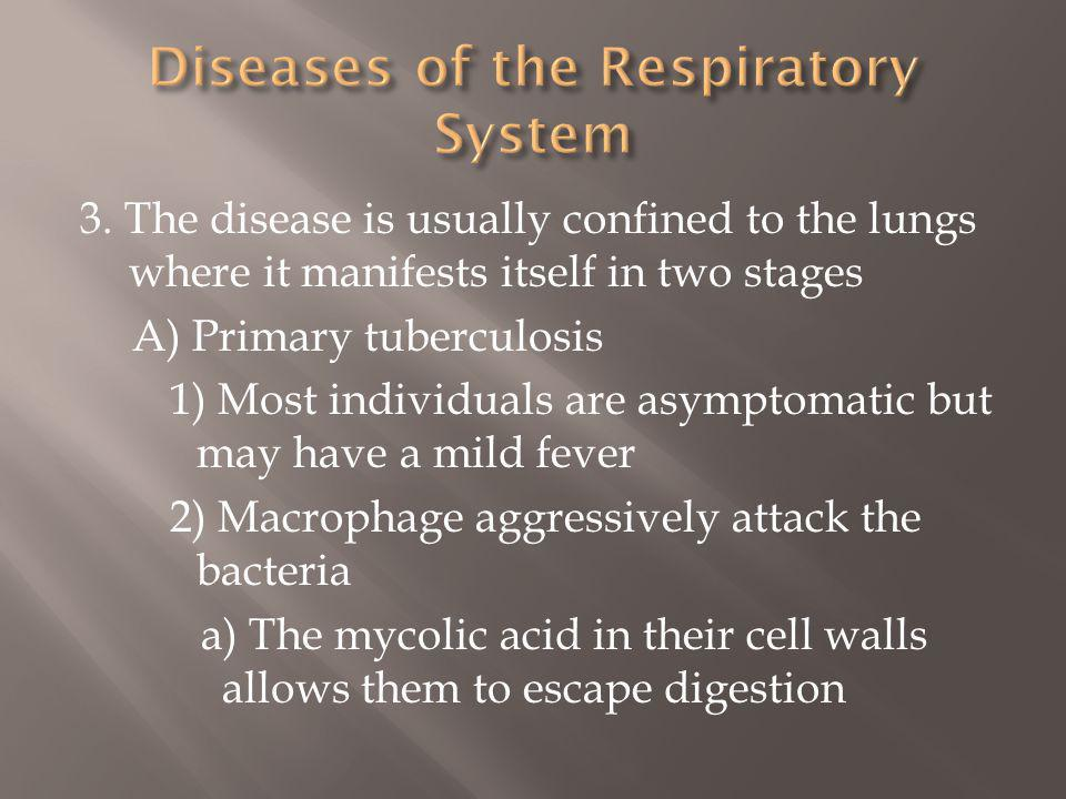 3. The disease is usually confined to the lungs where it manifests itself in two stages A) Primary tuberculosis 1) Most individuals are asymptomatic b