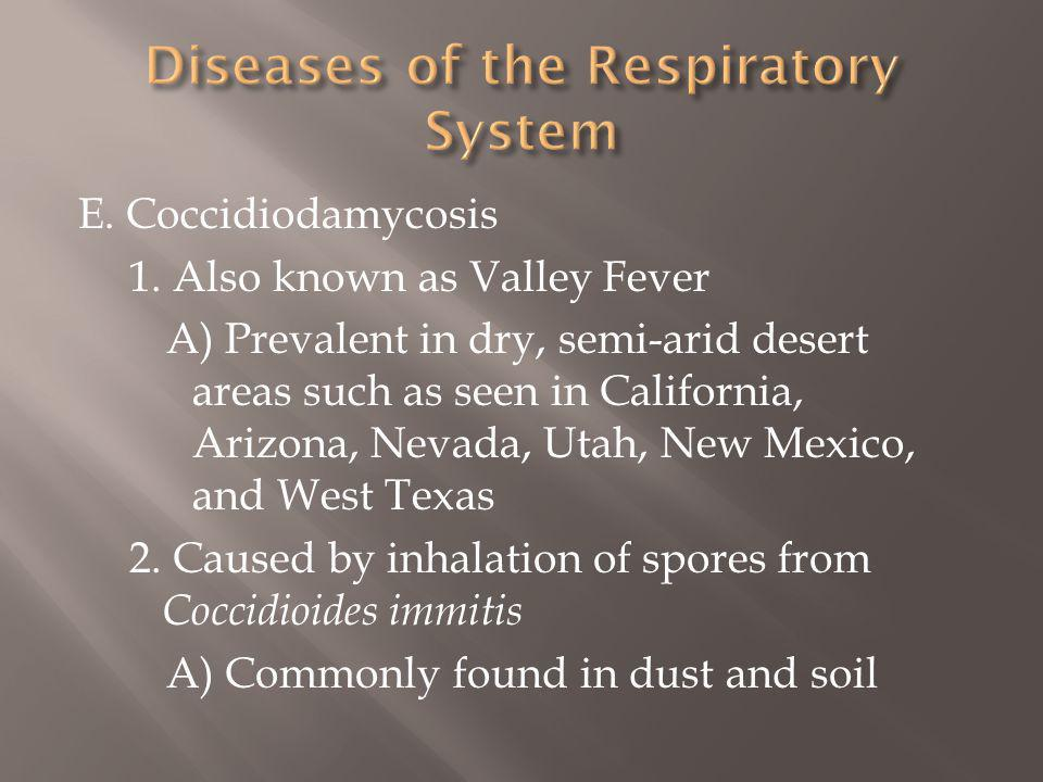 E. Coccidiodamycosis 1. Also known as Valley Fever A) Prevalent in dry, semi-arid desert areas such as seen in California, Arizona, Nevada, Utah, New
