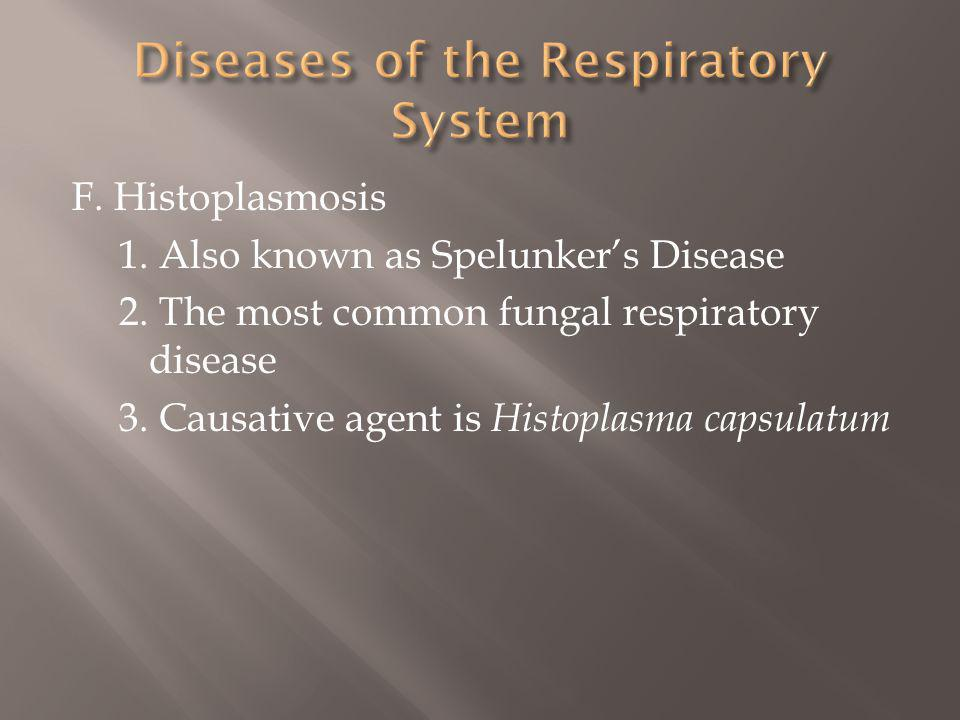 F.Histoplasmosis 1. Also known as Spelunkers Disease 2.