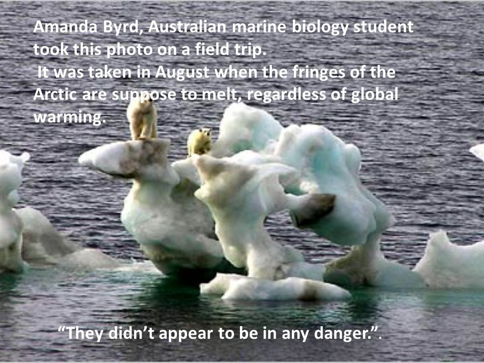 Amanda Byrd, Australian marine biology student took this photo on a field trip. It was taken in August when the fringes of the Arctic are suppose to m