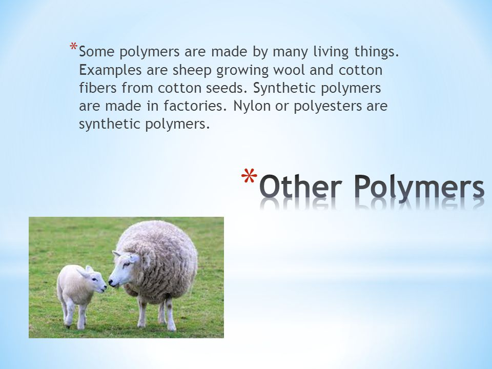 * Some polymers are made by many living things.