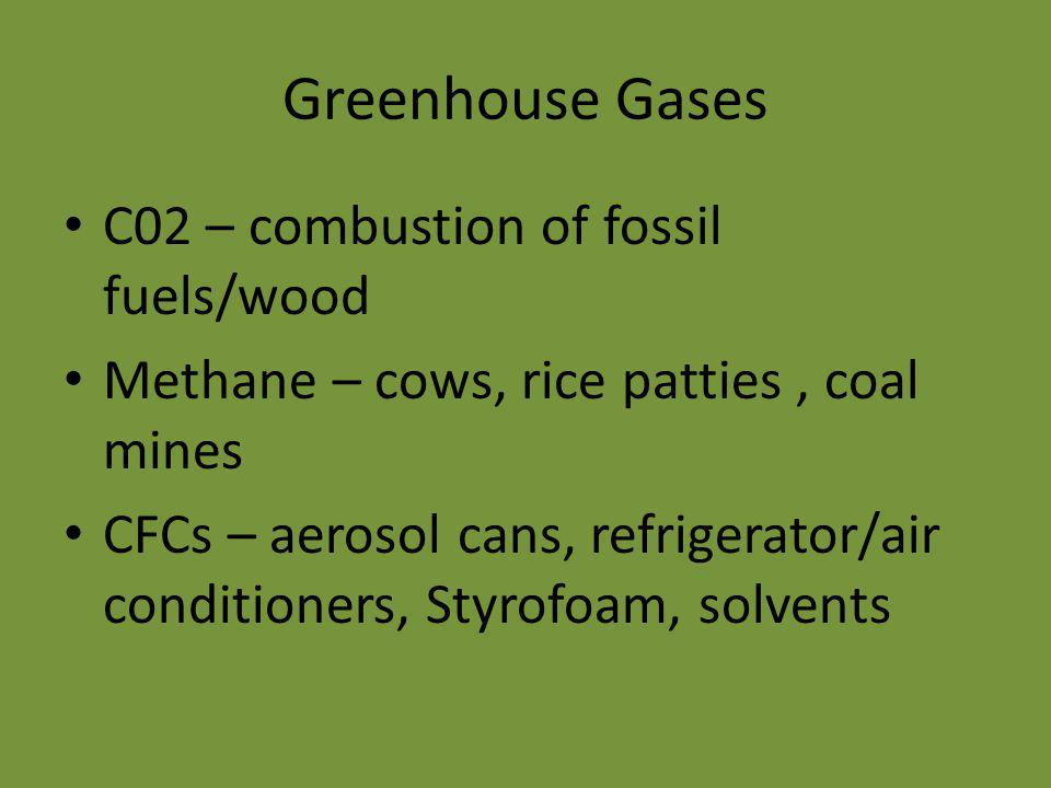 Greenhouse Gases C02 – combustion of fossil fuels/wood Methane – cows, rice patties, coal mines CFCs – aerosol cans, refrigerator/air conditioners, Styrofoam, solvents