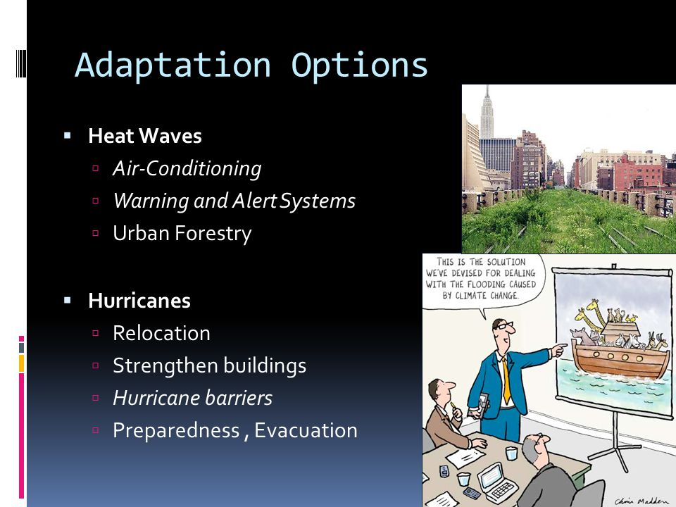 Adaptation Options Heat Waves Air-Conditioning Warning and Alert Systems Urban Forestry Hurricanes Relocation Strengthen buildings Hurricane barriers