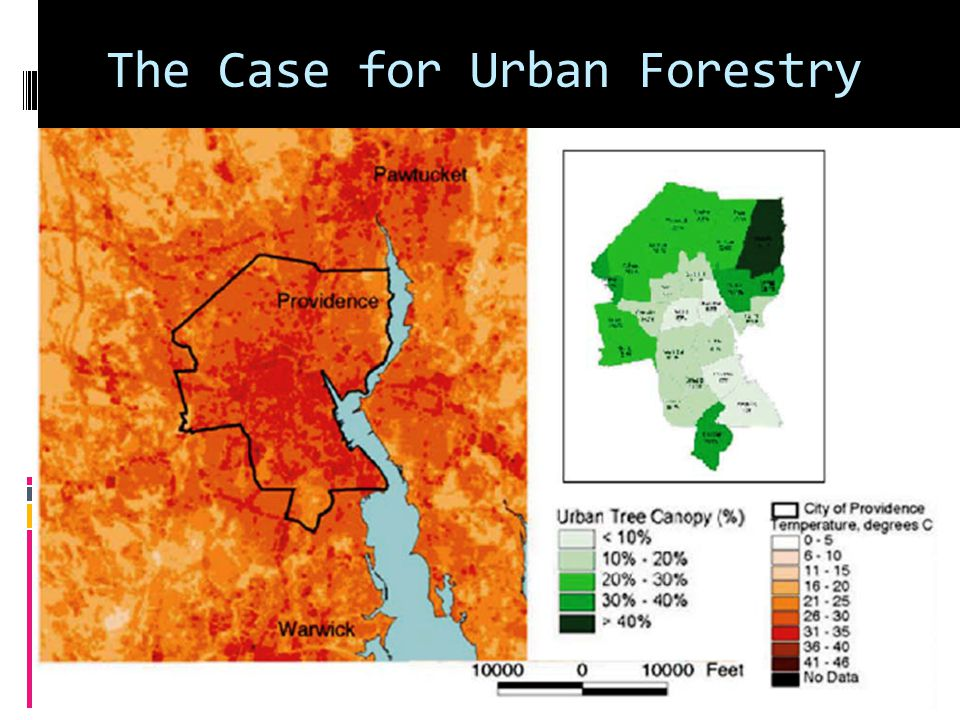 The Case for Urban Forestry