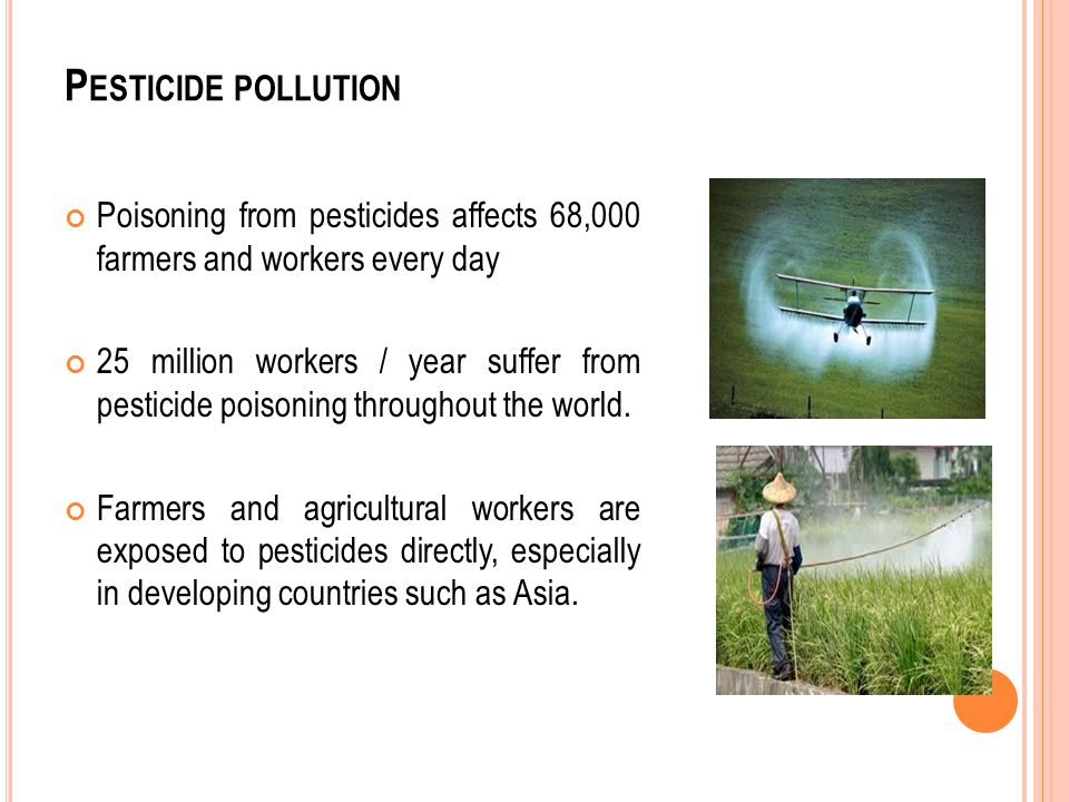 P ESTICIDE POLLUTION Poisoning from pesticides affects 68,000 farmers and workers every day 25 million workers / year suffer from pesticide poisoning throughout the world.